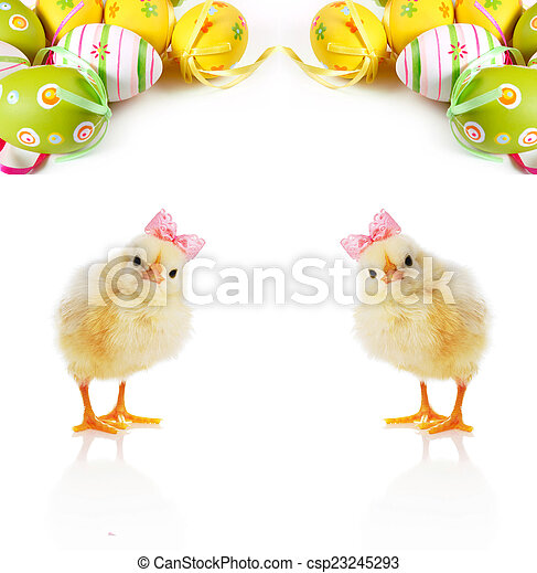 Cute fluffy chicks and Easter Eggs - csp23245293