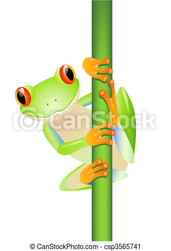 Cute frog - csp3565741