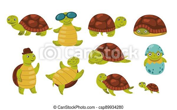 Cute funny turtle set - csp89934280
