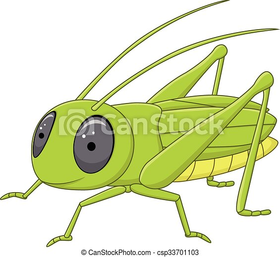 Cute grasshopper posing isolated  - csp33701103