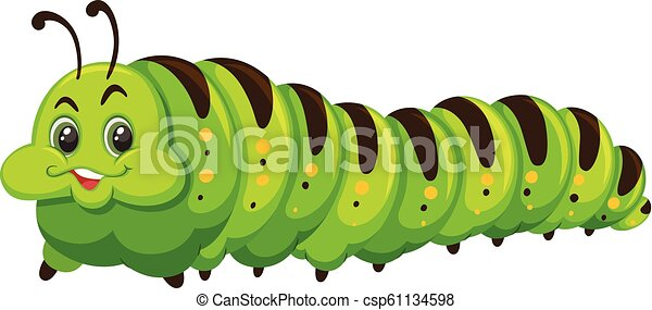 Cute happy green catapillar - csp61134598