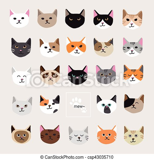 Cute Kitty Cat Face Collection