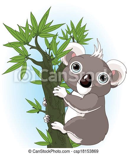 Cute koala on a tree - csp18153869