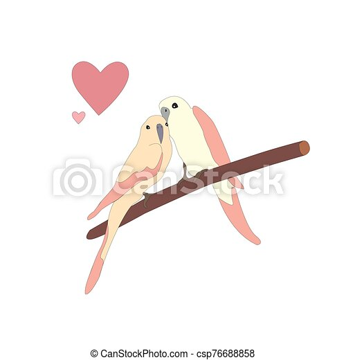 Cute lovely birds sitting on a branch - csp76688858