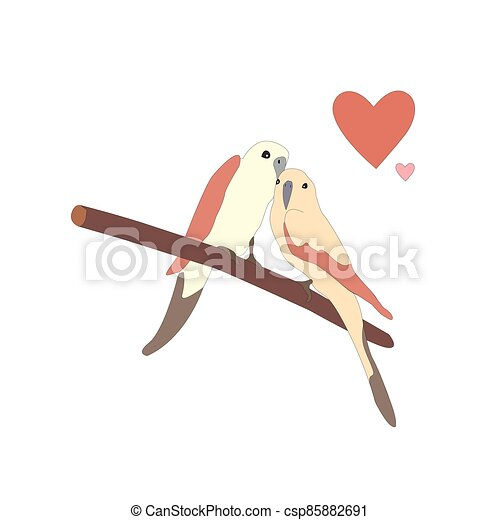 Cute lovely birds sitting on a branch - csp85882691