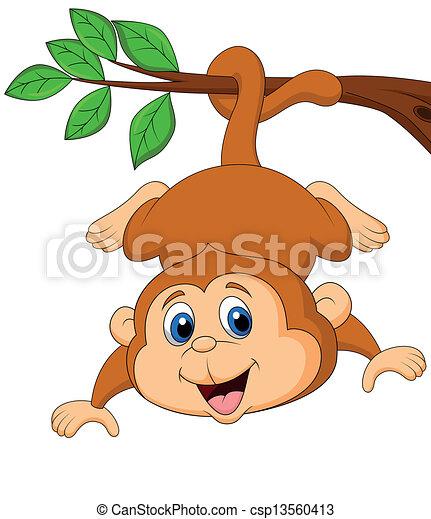 Cute monkey hanging on a tree branc - csp13560413
