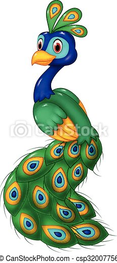 vector illustration of cute peacock cartoon isolated on white background https www canstockphoto com cute peacock cartoon isolated 32007756 html
