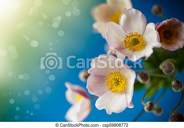Cute pink flowers on a blue background - csp59908772