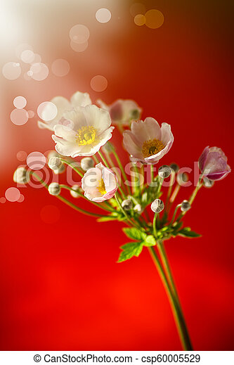 Cute pink flowers on a red background - csp60005529
