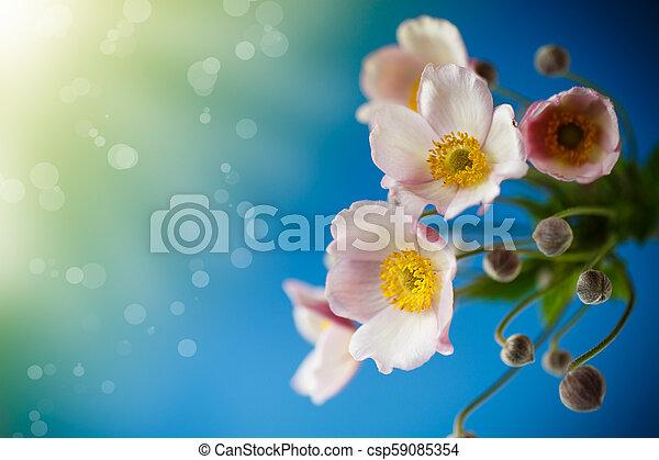 Cute pink flowers - csp59085354