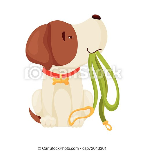 Cute puppy holding a leash. Vector illustration on white background. - csp72043301