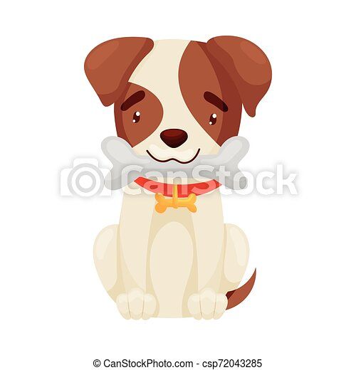 Cute puppy holds a bone in his teeth. Vector illustration on white background. - csp72043285