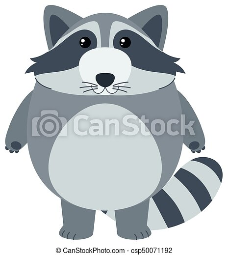 Cute raccoon with happy face - csp50071192