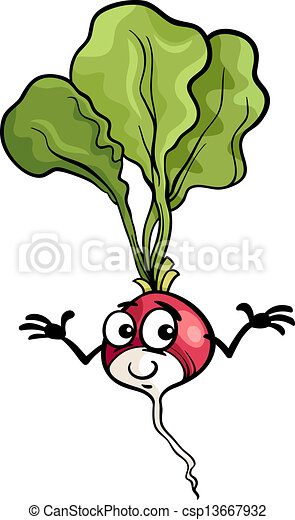 cute radish vegetable cartoon illustration cartoon vectors rh canstockphoto com radish image clipart picture of radish clipart