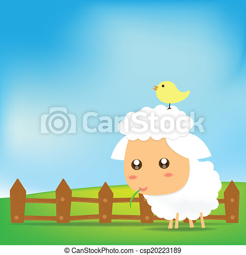 Cute Sheep on green field - csp20223189