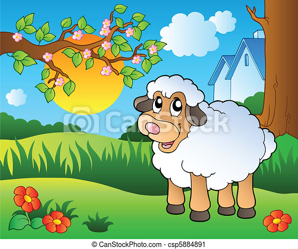 Cute sheep on spring meadow - csp5884891