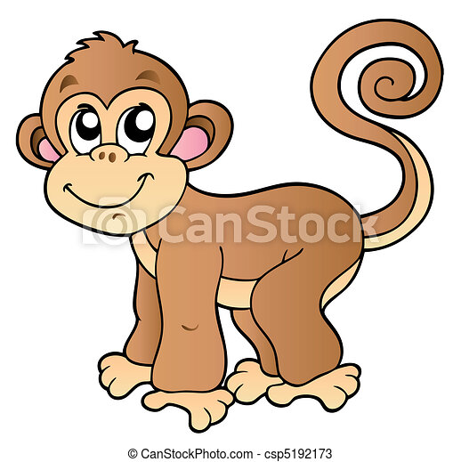 Cute small monkey - csp5192173