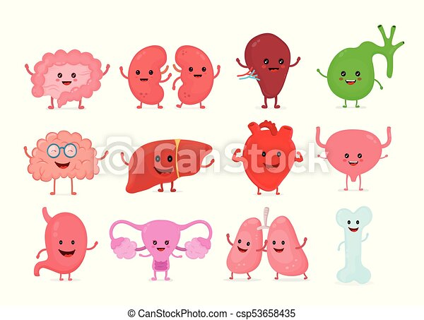 strong cute healthy happy brain character talking dialog vectors