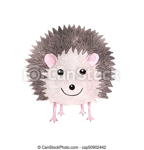 Cute smiling watercolor hedgehog - csp50902442