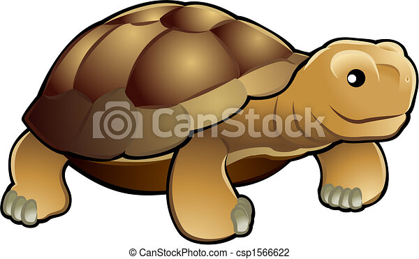 Cute tortoise vector illustration - csp1566622