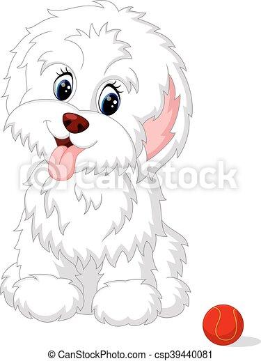 Cute white lap-dog puppy posing - csp39440081
