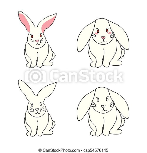 Cute White Rabbit isolated on White Background. - csp54576145