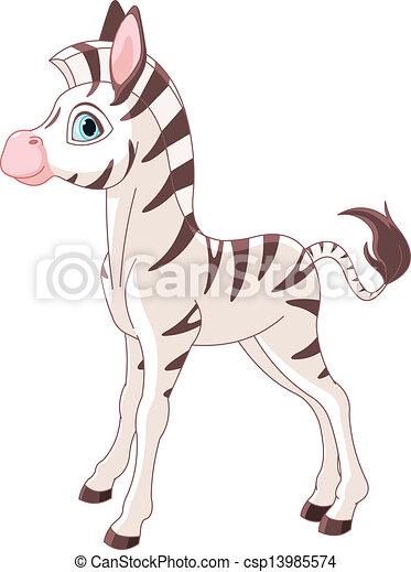 Cute Zebra Foal - csp13985574