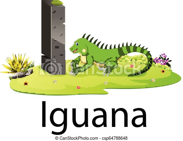 cute zoo animal alphabet I for Iguana with real animal - csp64788648