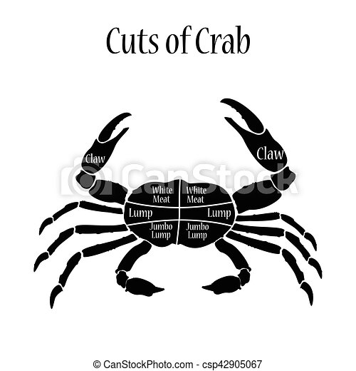 Cuts Of Crab Vector Illustration Cut Of Meat Set Poster Butcher