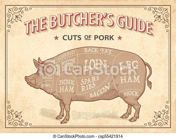 Cuts Of Pork Illustrations Original Illustration Of Cuts Of Pork