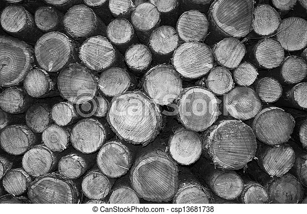 Cutted wood in monochrome - csp13681738
