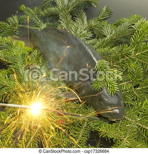 Czech Christmas tradition (Christmas carp) - csp17326684