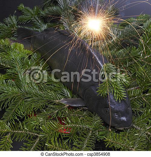 Czech Christmas tradition (Christmas carp) - csp3854908