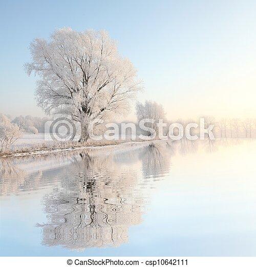 Die Landschaft des Winterbaums im Morgengrauen - csp10642111