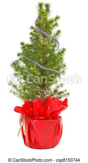 Decoratif Petit Pot Arbre Noel Decoratif Pot Arbre Petit