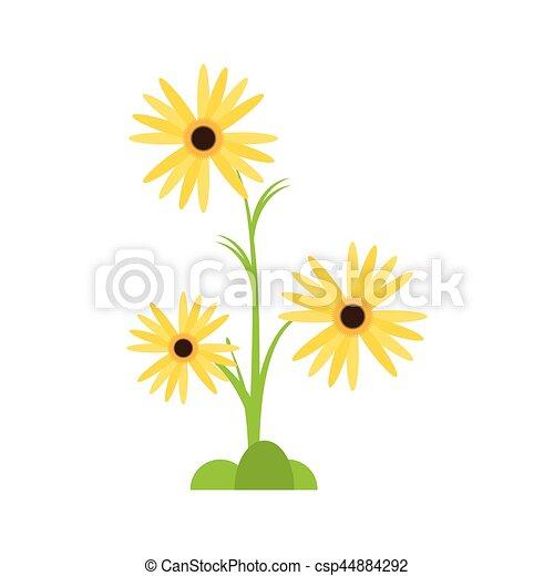 Decoratif Plante Souci Fleur Decoratif 10 Plante Fleur Eps