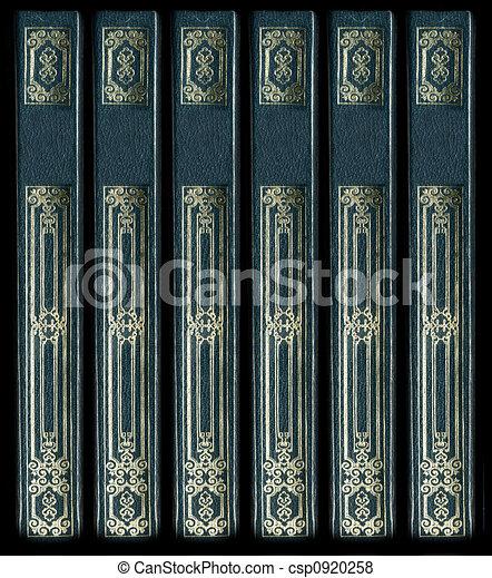 décoratif, vieux, or, cuir, vendange, colonnes vertébrales, livre, détails - csp0920258
