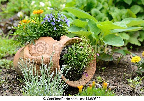 Décoration, jardin. Cruche, pourpre, céramique, lit, flowers ...