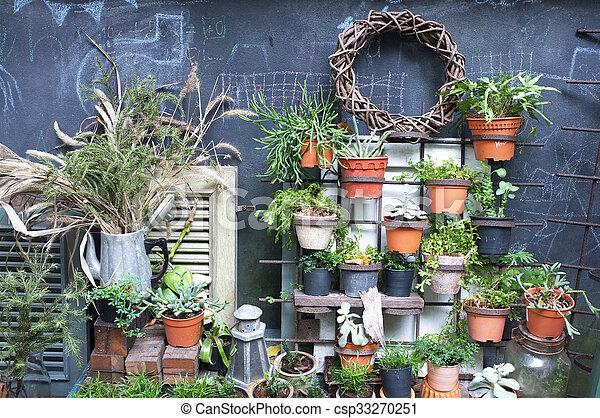 décoration, plante, jardin, pot