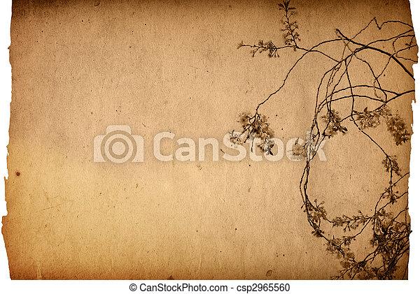démodé, fleur, artistique - csp2965560