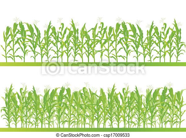 détaillé, campagne, maïs, illustration, champ, vecteur, fond, paysage - csp17009533