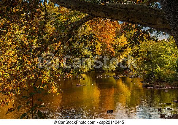 Sedona foliage en un día nublado de otoño - csp22142445