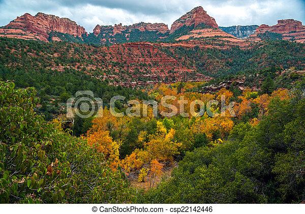 Sedona foliage en un día nublado de otoño - csp22142446
