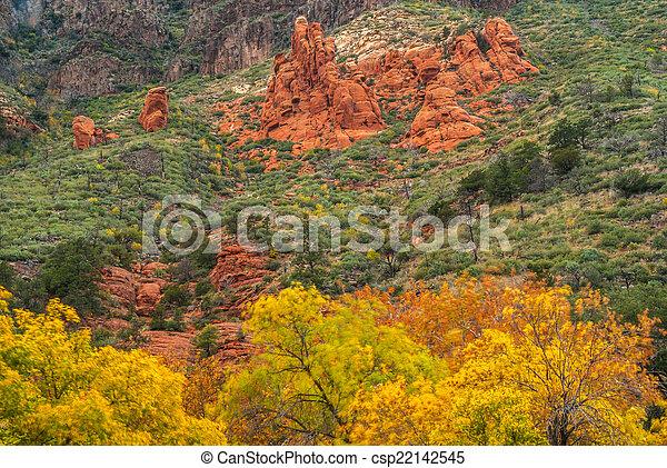 Sedona foliage en un día nublado de otoño - csp22142545
