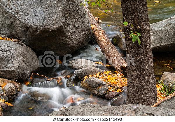 Sedona foliage en un día nublado de otoño - csp22142490