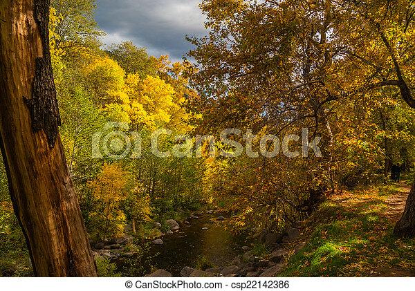 Sedona foliage en un día nublado de otoño - csp22142386