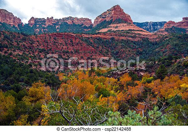 Sedona foliage en un día nublado de otoño - csp22142488