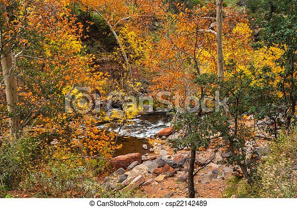 Sedona foliage en un día nublado de otoño - csp22142489