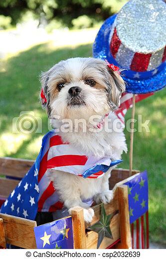 dísz, feláll, július, öltözött, kutya, 4 - csp2032639