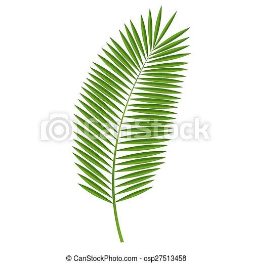 dłoń, wektor, liść, ilustracja - csp27513458